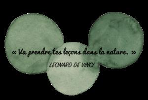 Aquarelle Valérie Faure & citation L De Vinci pour illustrer la nature
